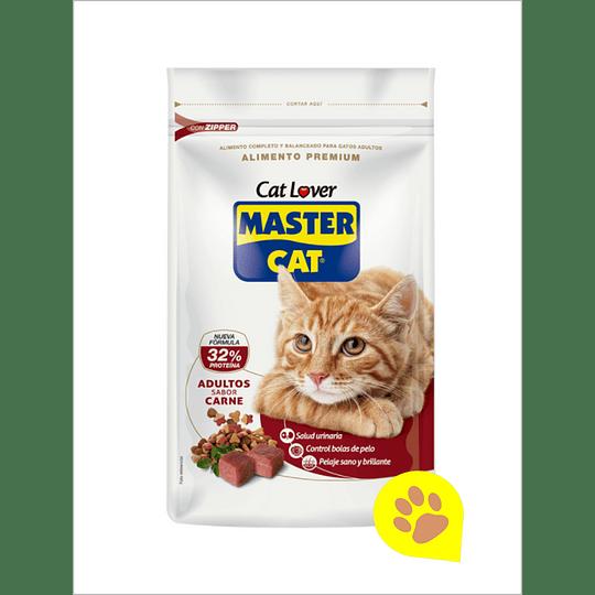 Master Cat Carne 20 Kg