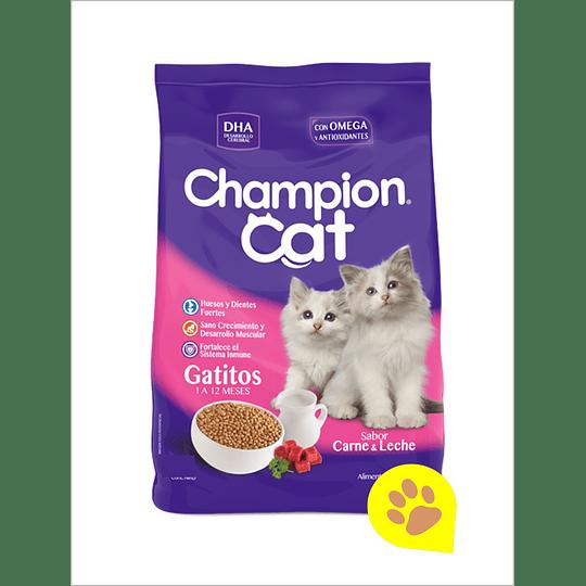 Champion Cat Gatito 20 Kg