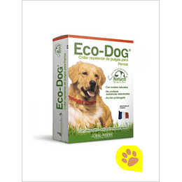 Eco-Dog Collar