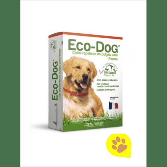 Eco-Dog Collar