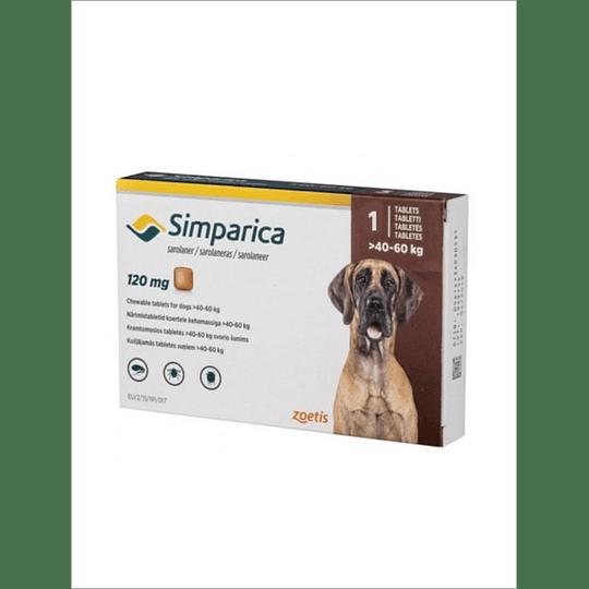 Simparica 120 mg - 40 kg a 60 kg