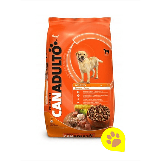 Can Adulto 18 Kg