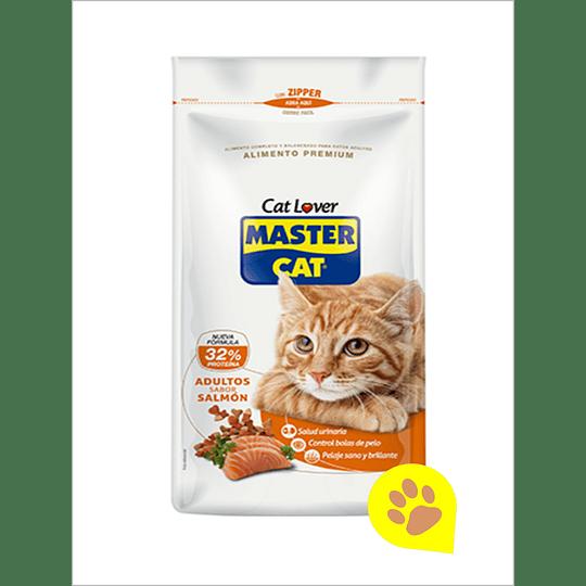 Master Cat Salmon 20 Kg