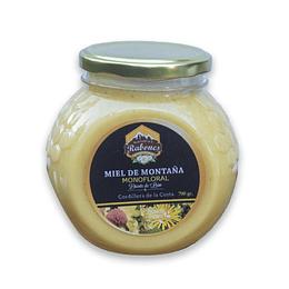 Miel diente de León 700 grs