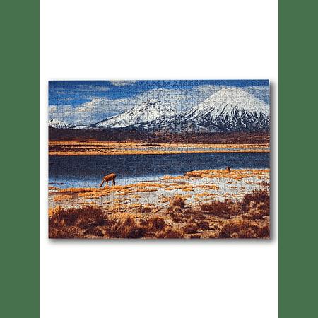 Puzzle Lago Chungará 1000 Piezas