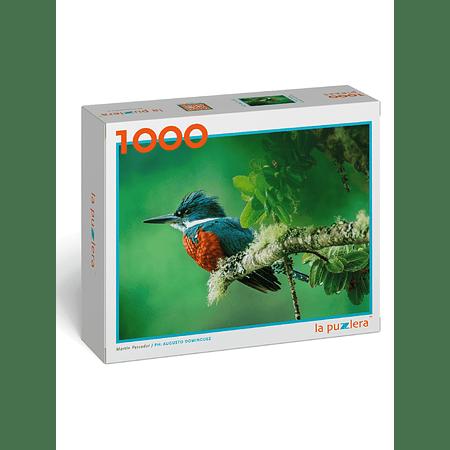 Puzzle Martín Pescador 1000 Piezas