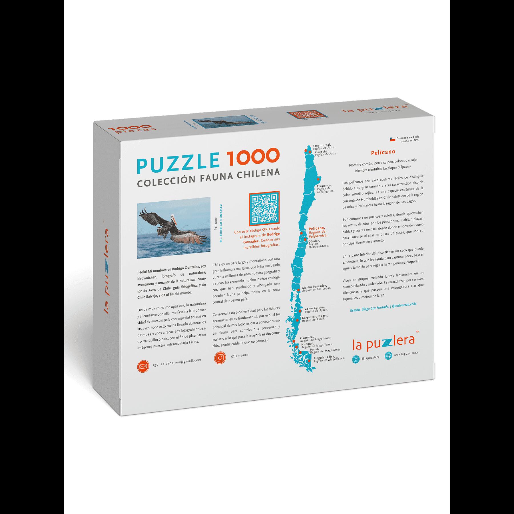 Puzzle Pelícano 1000 Piezas
