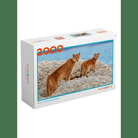Puzzle Puma 2000 Piezas