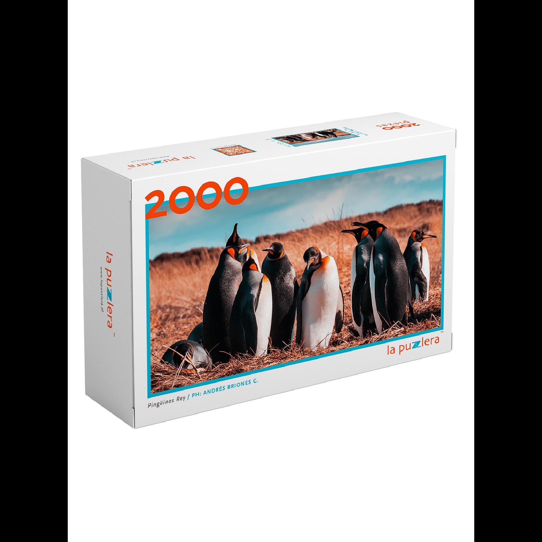 Puzzle Pinguino Rey 2000 Piezas
