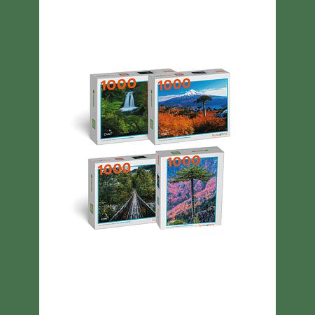 """Pack Puzzles """"Bosques del Sur de Chile"""" (4 Puzzles)"""
