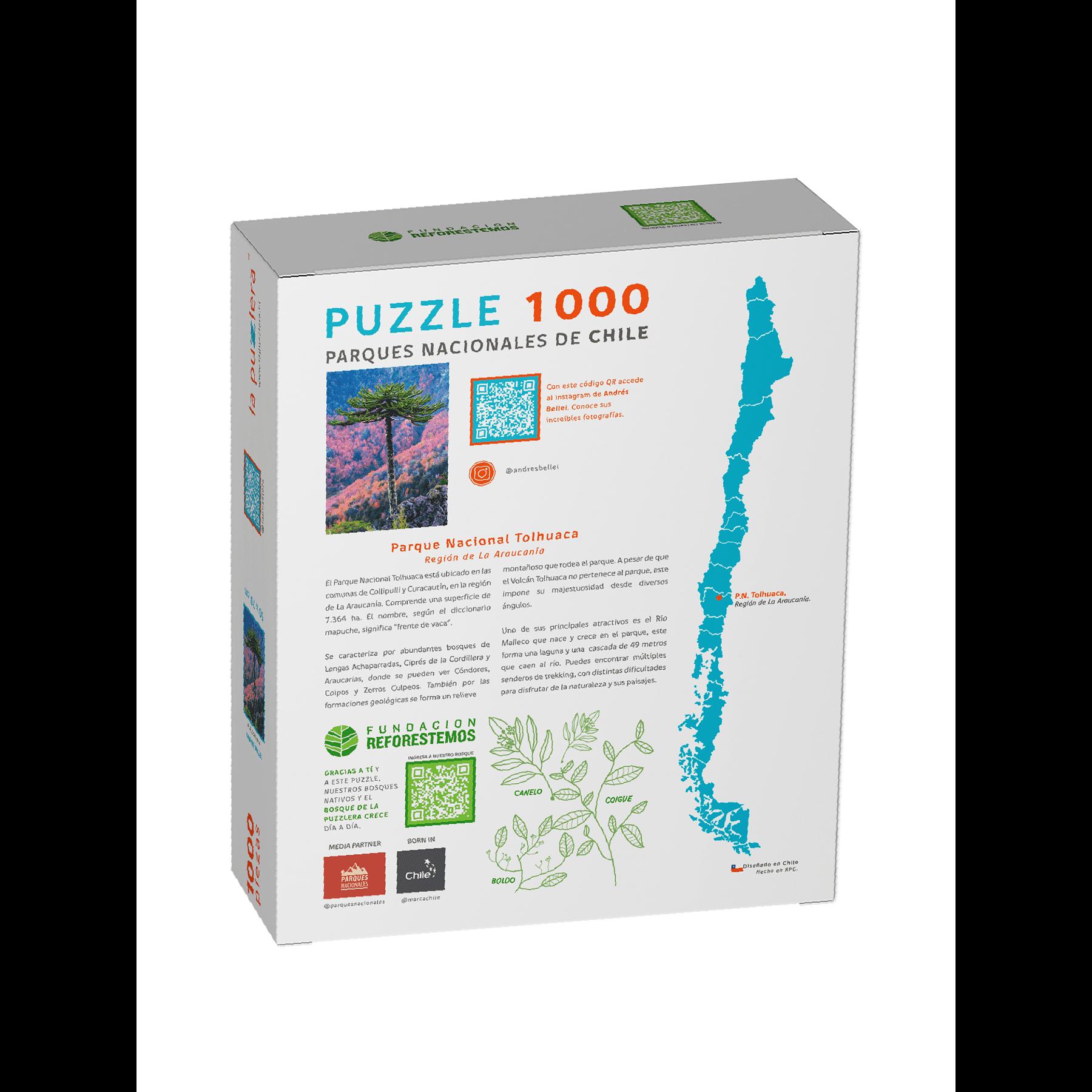 Puzzle Parque Nacional Tolhuaca 1000 Piezas