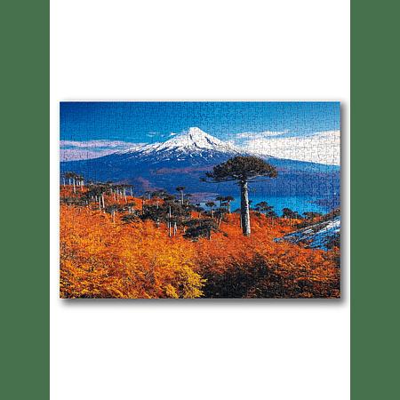Puzzle Parque Nacional Conguillio 1000 Piezas