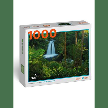 Puzzle Parque Nacional Puyehue 1000 Piezas