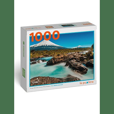 Puzzle Parque Nacional Vicente Pérez Rosales 1000 Piezas