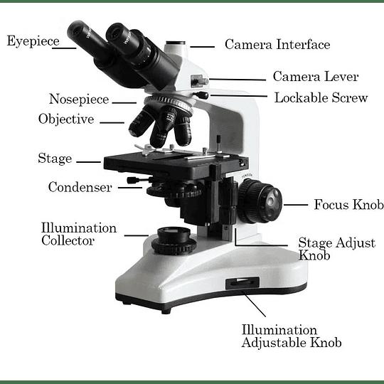 Microscopio Trinocular Kohler, Plan Acromaticos, 40-1600X, Profesional, Iluminacion Led, Veterinario, Laboratorio