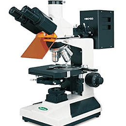 Microscopio Trinocular Fluorescencia Vanguard 1286ECM, halogenena