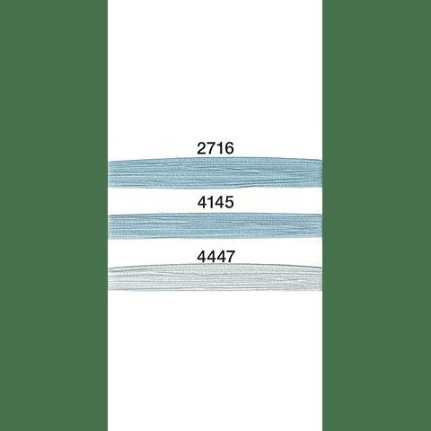 100 metros - Azules