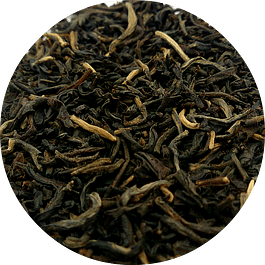 Yunnan Golden Special - Dian Hong