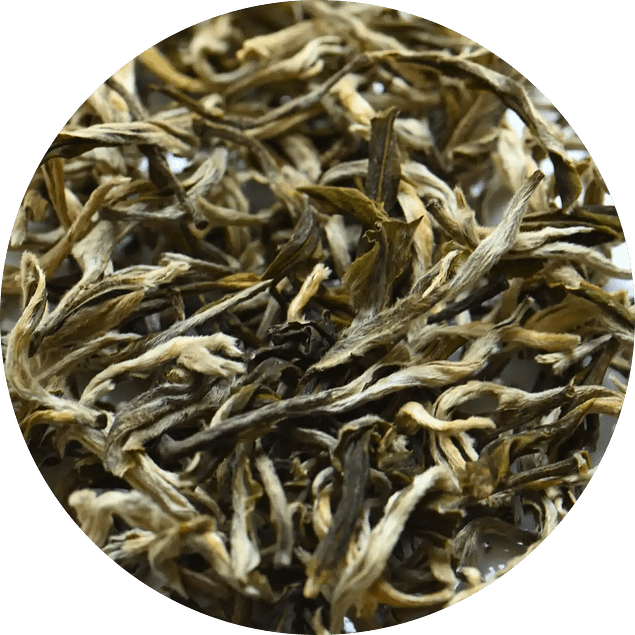 White Monkey Green Tea FOP