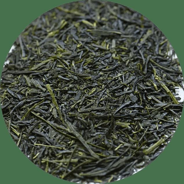 Sencha Kiri - Sencha sombreado de Yame