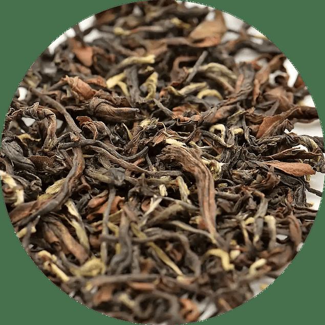 Darjeeling Arya Tea Estate - Ruby Orgánico