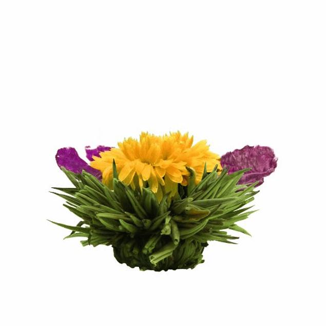 Regalo de Té Floreciente - Blooming Tea Gift