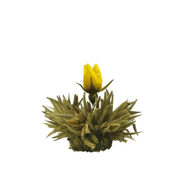 Regalo de Té Floreciente - Blooming Tea Gift abloom