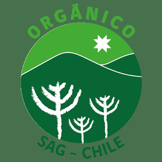 Boldo orgánico, boldo de Chile