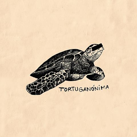 Tortuganónima