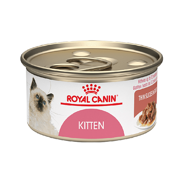 Royal Canin Lata Kitten