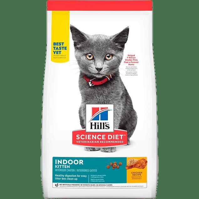 Hills Kitten Indoor