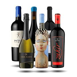 4_Caja Vinos Premium Chilenos