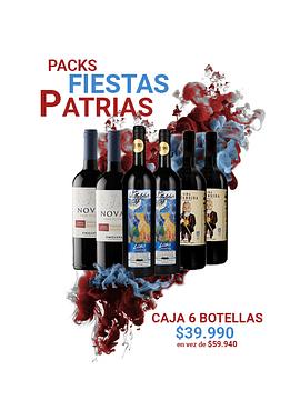 Caja de 6 botellas de vino chileno