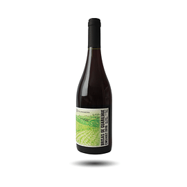Wildmakers - Brisas de Guarilihue, Cinsault, 2019