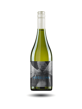 Alchemy Wines - Angelina White Angel, Sauvignon Blanc