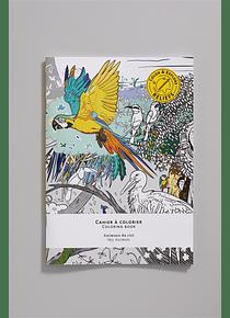 Animaux du ciel - Cahier à colorier