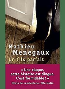 Un fils parfait, de Mathieu Menegaux