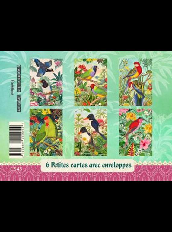 Set de cartes Oiseaux des îles