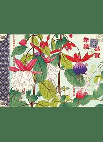 Cahier illustré Tanigami Konan
