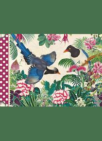 Cahier illustré Oiseaux