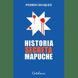 Historia secreta mapuche 1