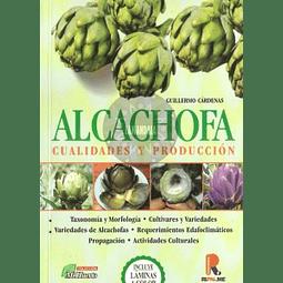 Alcachofa cualidades y producción