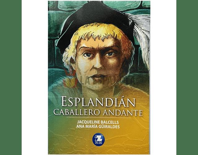 LIBRO 'ESPLANDIAN, CABALLERO ANDANTE'