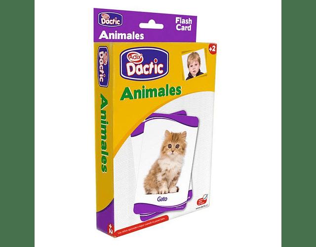 LAMINA DACTIC ANIMALES
