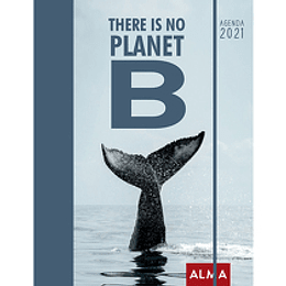 There Is No Planet Agenda 2021