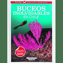Buceos Inolvidables En Chile