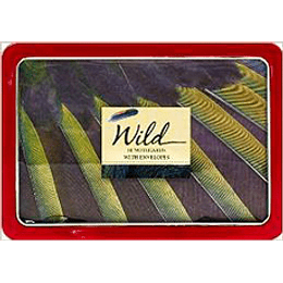 Wild 10 Notecards With Envelopes