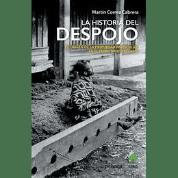 La Historia Del Despojo