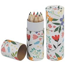 Lápis de Cor | Flores