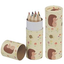 Lápis de Cor | Ouriço